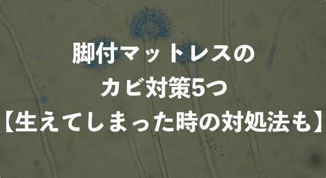 脚付きマットレスのカビ対策5つ【カビが生えた場合の対処法も解説】