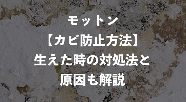 モットンのカビ防止法【生えてしまった時の対処法と原因も解説!】